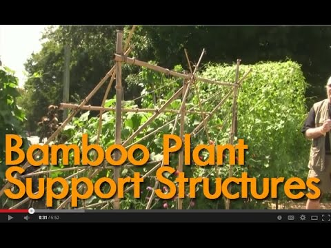 Ordinaire Good Gardening Videos