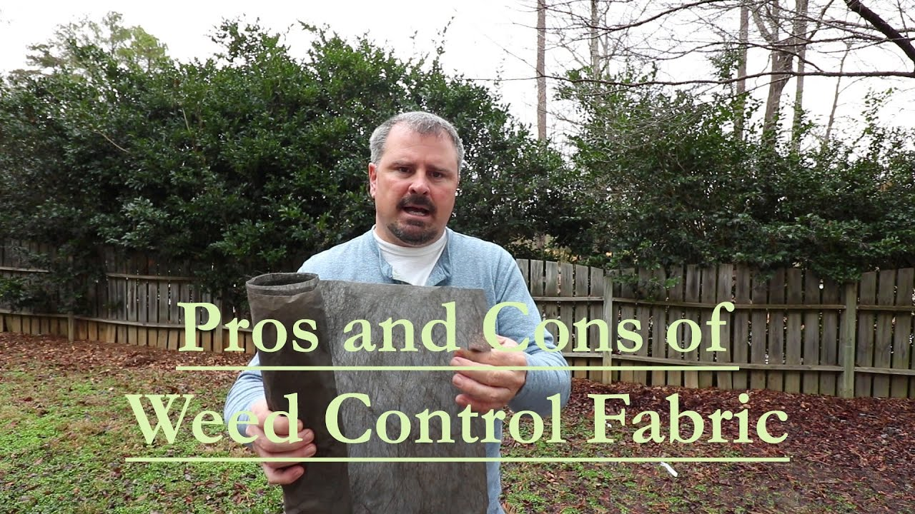 The Pros And Cons Of Using Weed Control Fabric