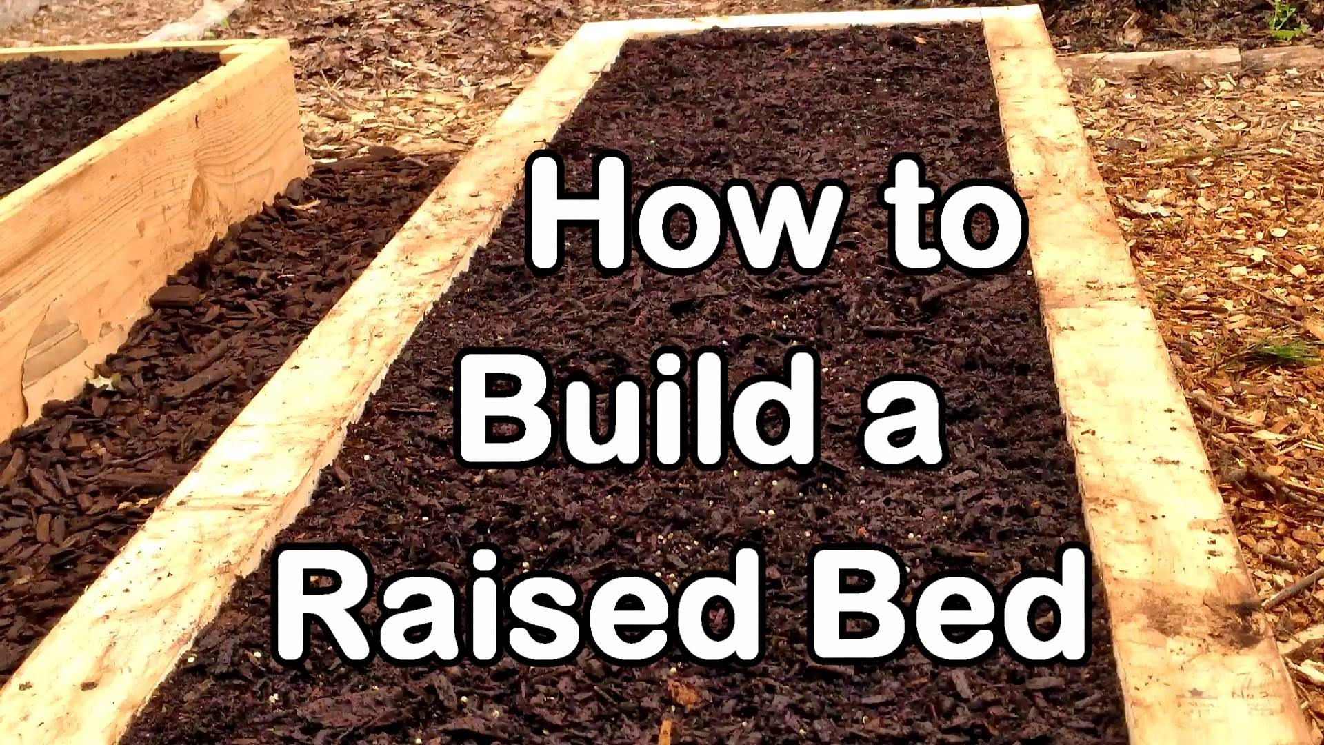 How to Build a Raised Garden Bed with Wood – Easy (EZ) & Cheap Youtube Raised Garden Bed Designs on small raised garden designs, best small vegetable garden designs, trellis designs, garden fence designs, raised bed shade gardens, raised planting beds, garden enclosure designs, garden box designs, berry garden designs, green wall designs, raised beds for gardens, water garden designs, rock garden designs, simple landscape designs, wheelchair garden bed designs, small perennial garden designs, raised gardens for handicapped, shade garden designs, knot garden designs, xeriscaping designs,